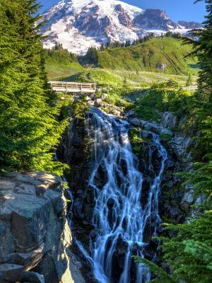 Silky Myrtle Falls
