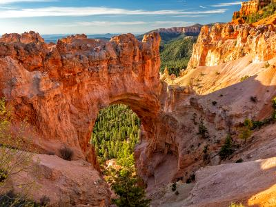 Bryce Canyon Natural Bridge in Morning Light