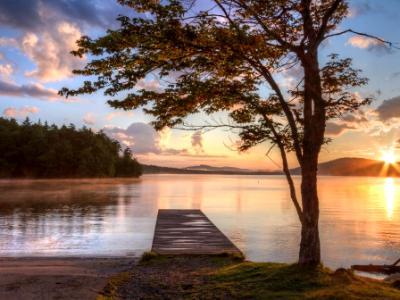 Tree and Dock Adirondacks Sunset
